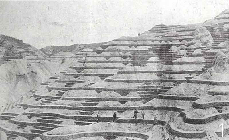 砂防植林が始まった明治36年の再度山