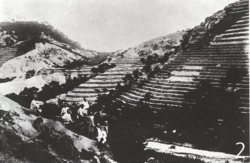 明治36年、植林のために山に入る人々
