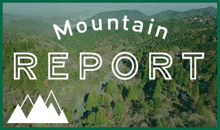 Mountain Report