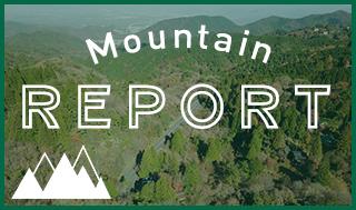 Mountain Report
