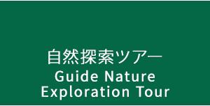 自然探索ツアー