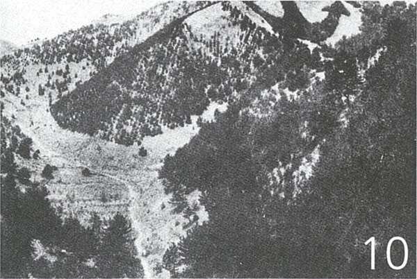 明治36年の観艦式後、つくられた錨山