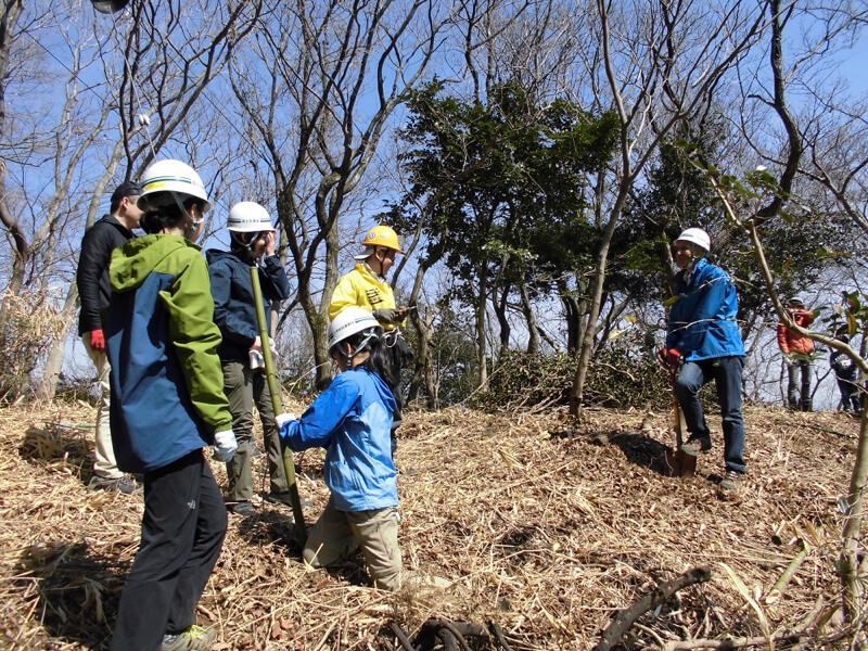 植樹により六甲山の緑を守る活動