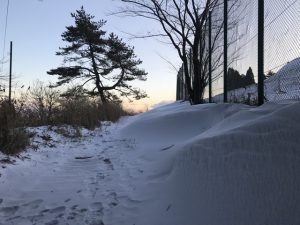 Rokkosan Snow Banks